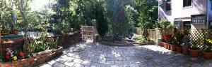 2014 Jungle Garden