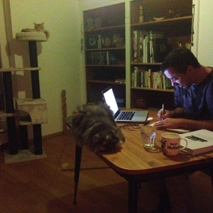 2015 liam proofreading with cats