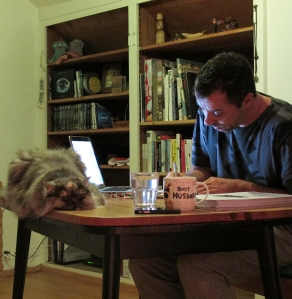2015 proofreading with pushka