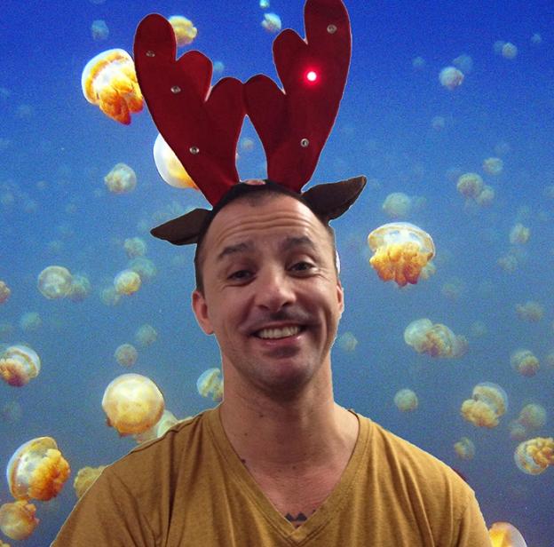 liam-reindeer-jellyfish