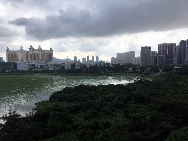 taipa after the storm