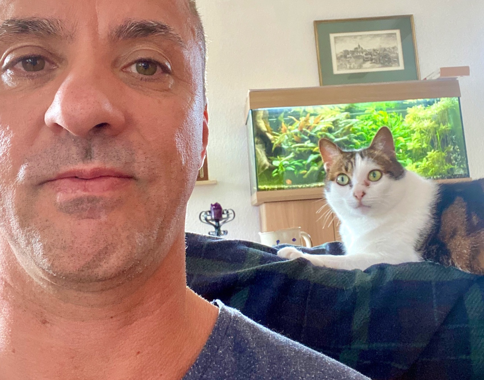 Isolation with Dad, Cat, and the Fish 2